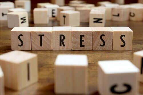 Qu'est-ce que le stress ? - Hackschooling Institute